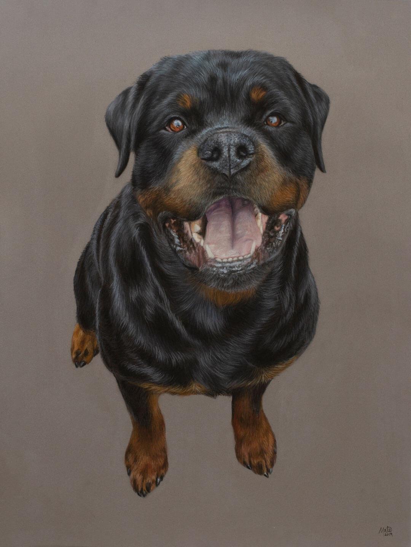 Pastel tegning af hunden Tec